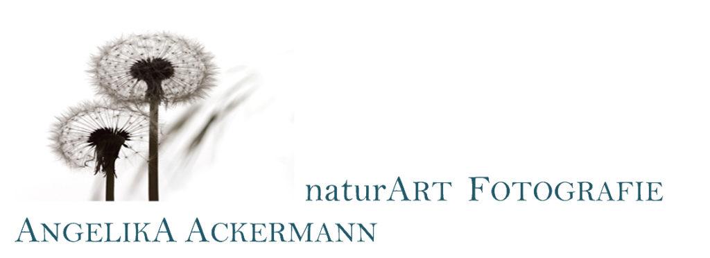Logo naturART von Angelika Ackermann