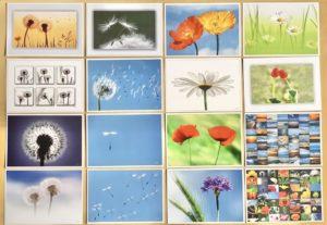 Postkarten von Angelika Ackermann