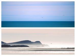 Meer und Möwen von Angelika Ackermann