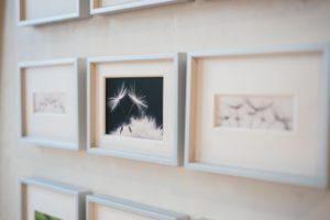 Bildgalerie von Angelika Ackermann