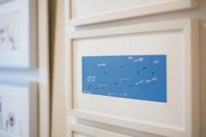 Schirmflieger-Bild von Angelika Ackermann
